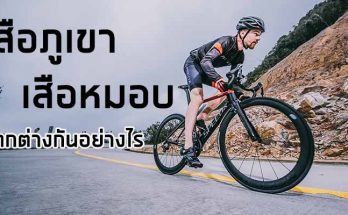 Road bike Speed